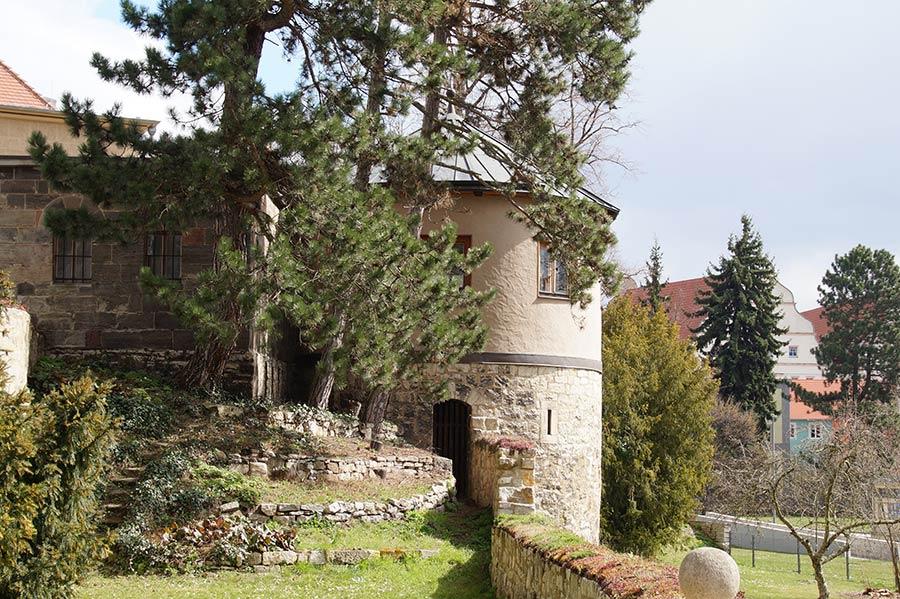 Garten im Dom zu Naumburg